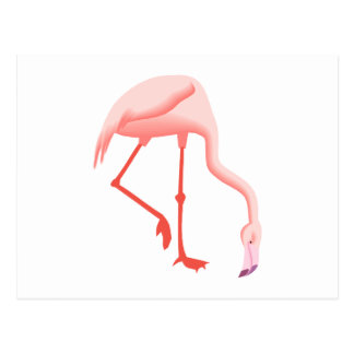 Fabio Flamingo Postcards