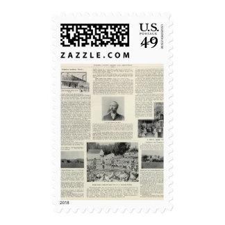 Fábrica de la incubadora de Petaluma, California Sello Postal