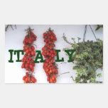 Fabricación de los tomates secados al sol rectangular altavoz