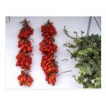 Fabricación de los tomates secados al sol tarjeta postal