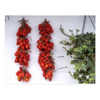 Fabricación de los tomates secados al sol postal