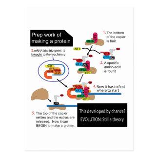 Fabricación de una proteína tarjeta postal