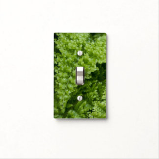 """""""fabulous fern"""" SWITCH PLATE COVER"""