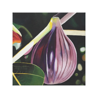 Fabulous Fig Stretched Canvas Print