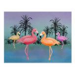 Fabulous Flamingos Post Card