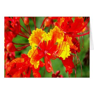 Fabulous Floral Card