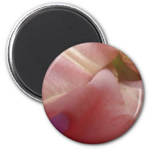 Fabulous Flowers 2 Inch Round Magnet