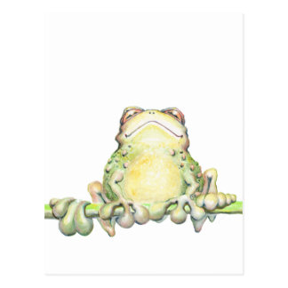 Fabulous Frog Post Card
