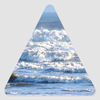 Fabulous Waves! Triangle Sticker