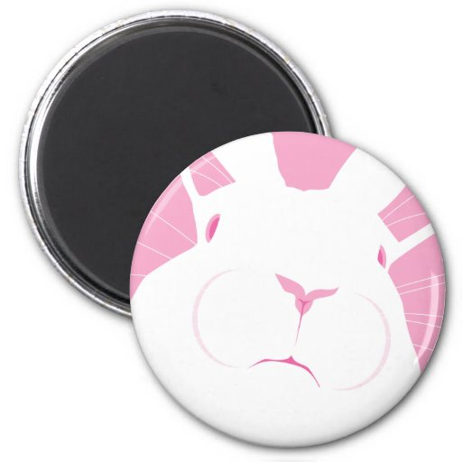 FACE 2 2 INCH ROUND MAGNET