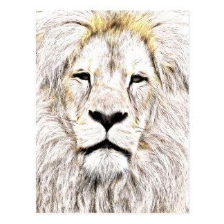 Face de leão Lion Face Löwen-Gesicht Face de Lion Post Card