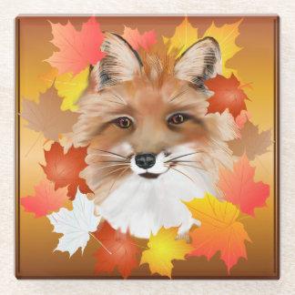 FACE in FALL-Fox eye view Glass Coaster