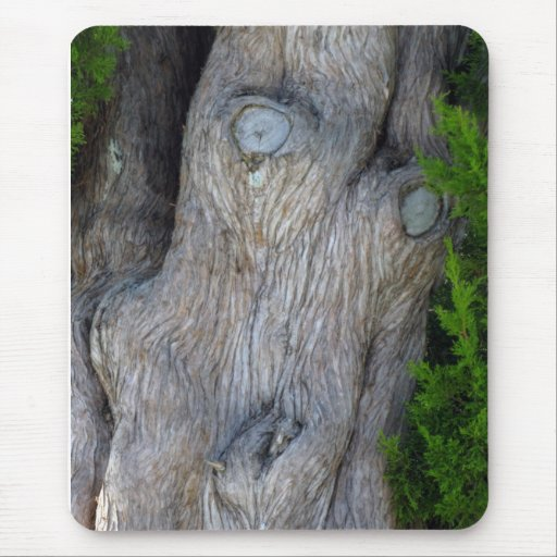 Face in the Cypress Tree Mouse Pad