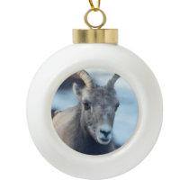 Face of a Bighorn Sheep Ceramic Ball Christmas Ornament
