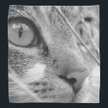 """Face of a Cat Bandana<br><div class=""""desc"""">Face of a Cat ...  On many products.</div>"""