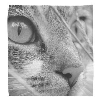 Face of a Cat Bandana