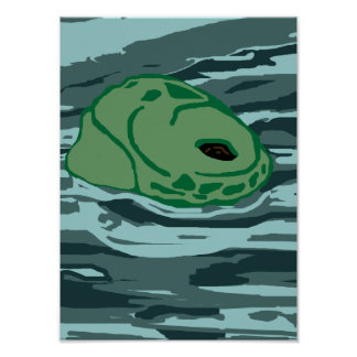 Face of a Honu poster