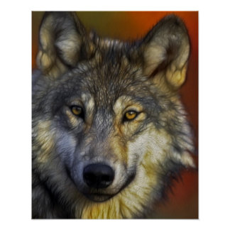Face of a Wolf Photo Poster