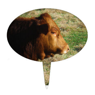 Face of Brown bull cow Cake Pick