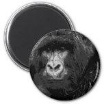Face of Gorilla 2 Inch Round Magnet