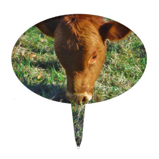 Face of Little Brown Cow Cake Toppers