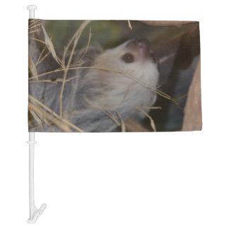Face of Sloth Car Flag