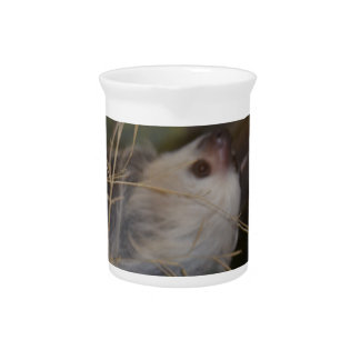 Face of Sloth Drink Pitcher
