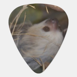 Face of Sloth Guitar Pick