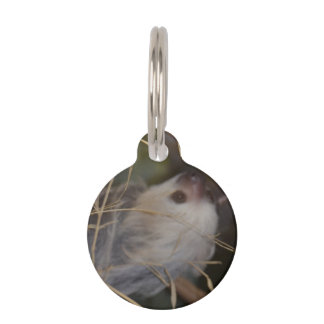 Face of Sloth Pet Name Tag