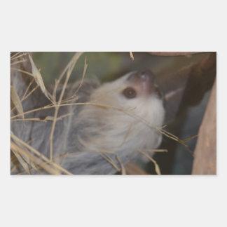 Face of Sloth Rectangular Sticker