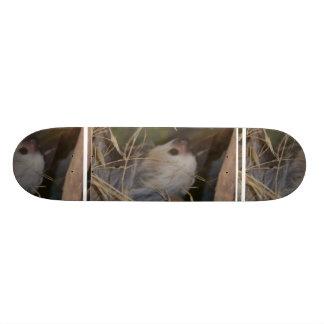 Face of Sloth Skateboard
