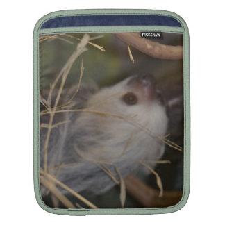 Face of Sloth Sleeve For iPads