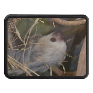 Face of Sloth Tow Hitch Cover