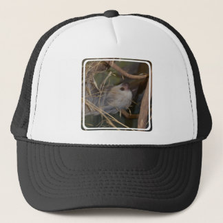 Face of Sloth Trucker Hat