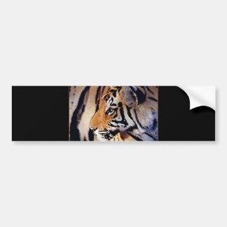 Face of Tiger Bumper Sticker