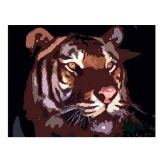 Face of Tiger Postcard