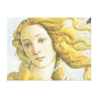 Face of Venus Canvas Print