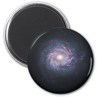 Face On Spiral Galaxy NGC 3982 from the Hubble 2 Inch Round Magnet