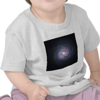 Face On Spiral Galaxy NGC 3982 from the Hubble Tee Shirts