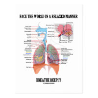 Face The World In A Relaxed Manner Breathe Deeply Postcard