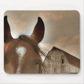 Face to Face Mouse Pad