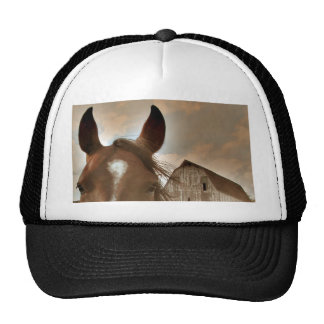 Face to Face Trucker Hat