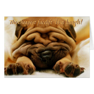 Facelift Shar-pei Card