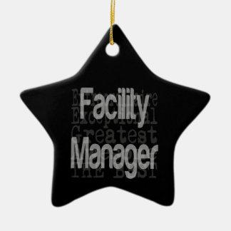 Facility Manager Extraordinaire Ceramic Ornament
