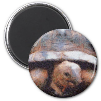 Facing a tortoise 2 inch round magnet