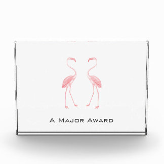 Facing Flamingos Award