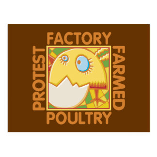 Factory Farm Animal Rights Postcard