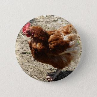 Factory Farm Hen Pinback Button