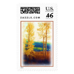 Faded Aspens postage