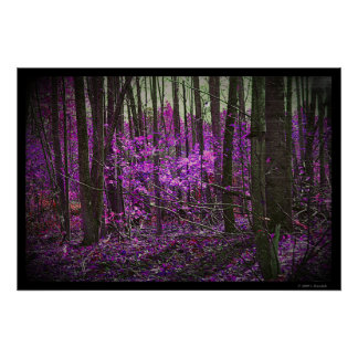 Faded Lavender Dreams poster